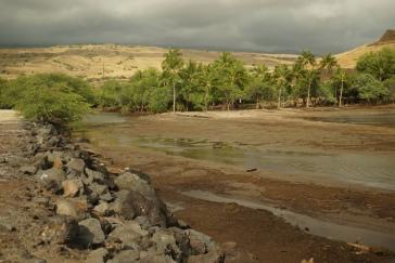 Flash flood left sediment in Pelekane Bay